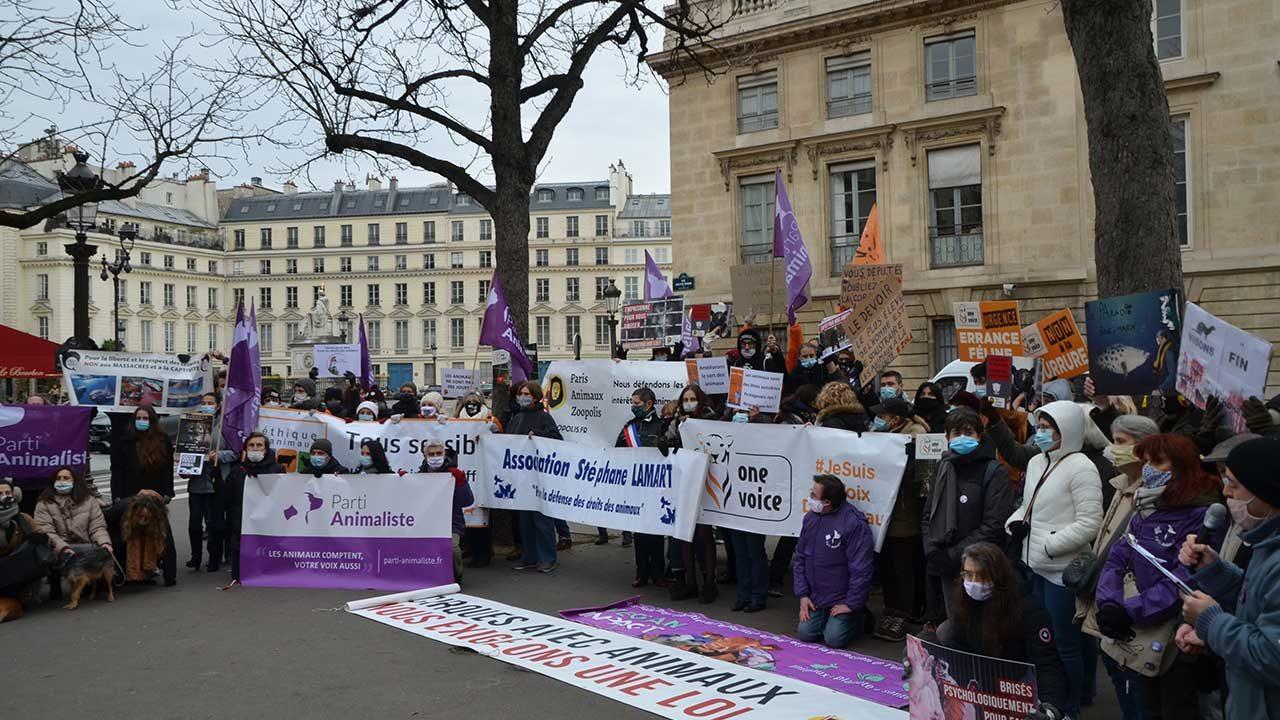 https://savoir-animal.fr/wp-content/uploads/2021-01-26-POURNY-Michel-Manif-du-PA-devant-Palais-Bourbon-184-1280x720.jpg