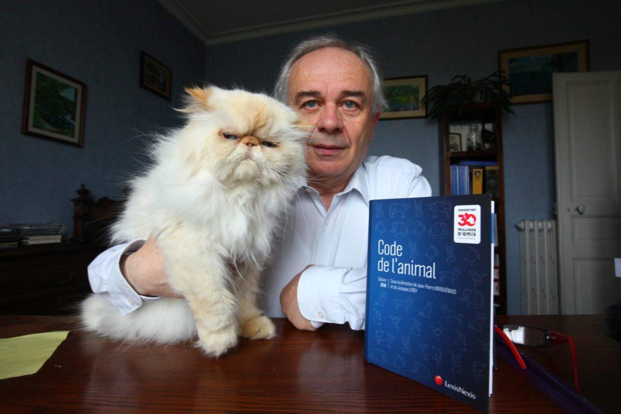 Interview du Professeur Jean-Pierre Marguénaud, le père fondateur du droit animalier en France