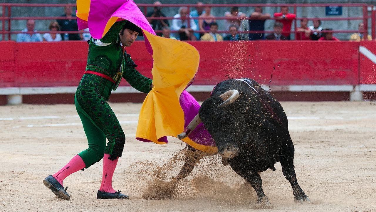 https://savoir-animal.fr/wp-content/uploads/bullfight-1957719_1280-1280x720.jpg
