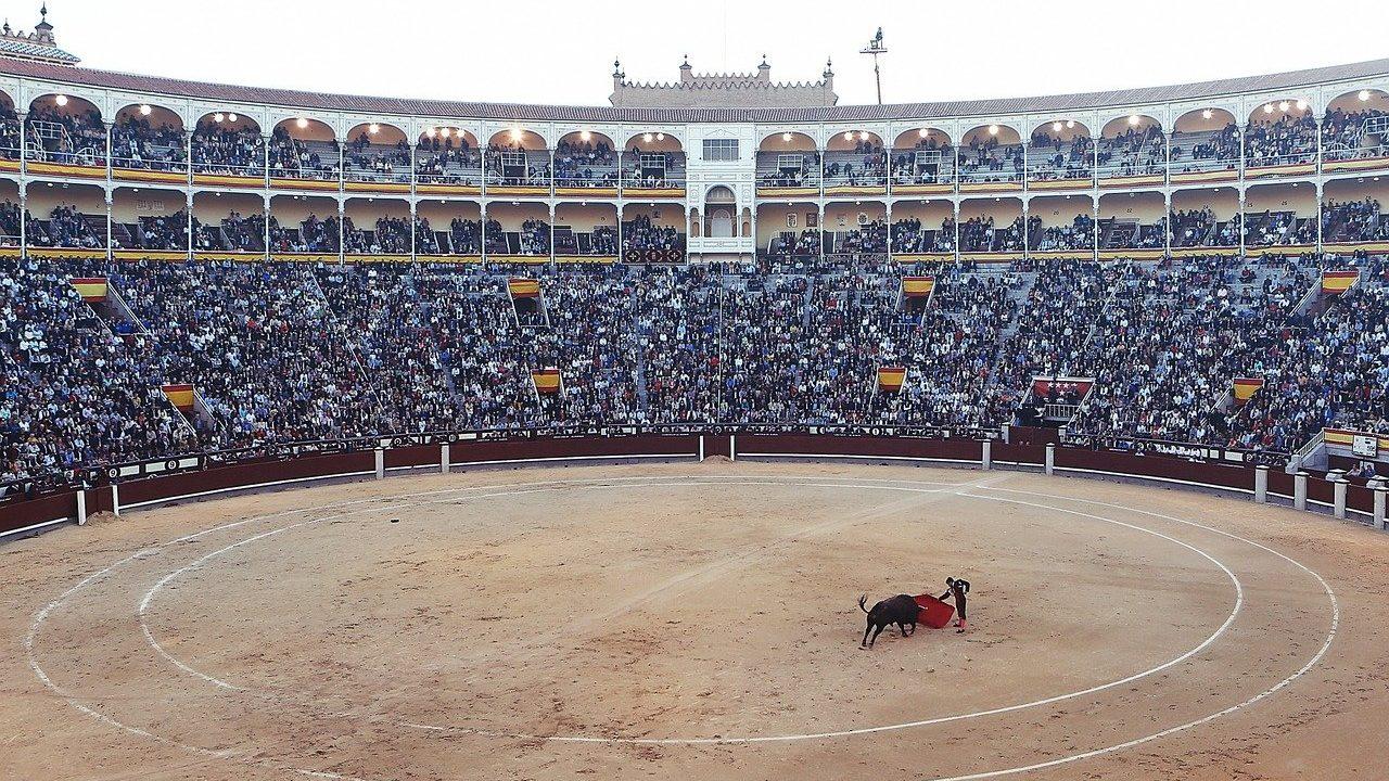 https://savoir-animal.fr/wp-content/uploads/bullfight-406865_1280-1-1280x720.jpg