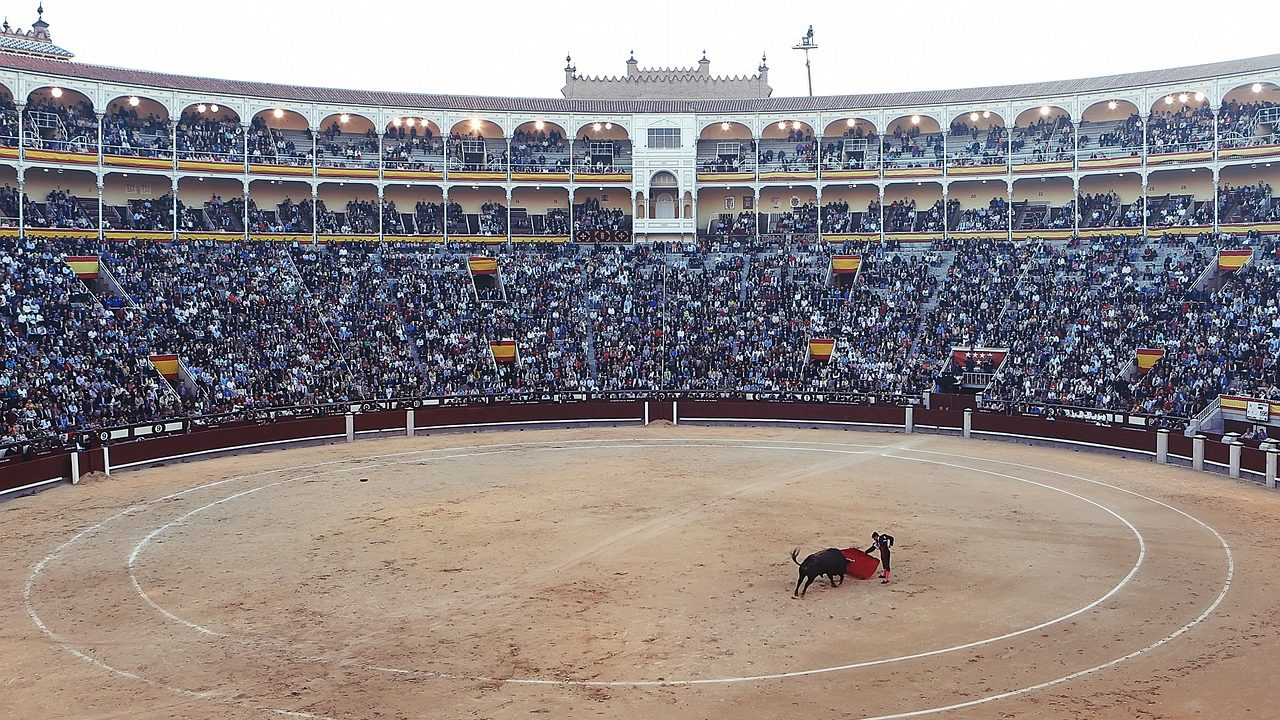 https://savoir-animal.fr/wp-content/uploads/bullfight-406865_1280-1280x720.jpg
