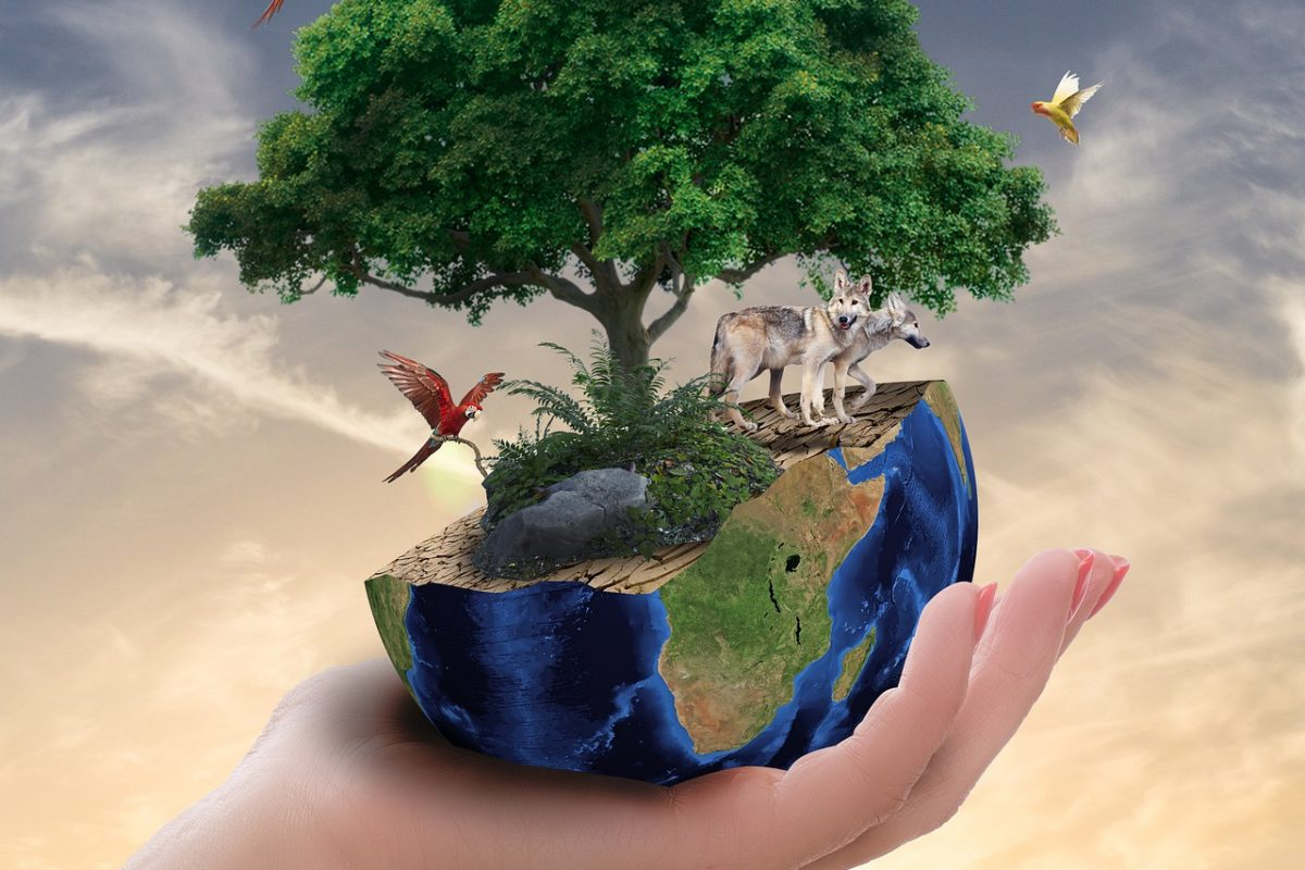 L'animalisme, composante essentielle de l'écologie politique