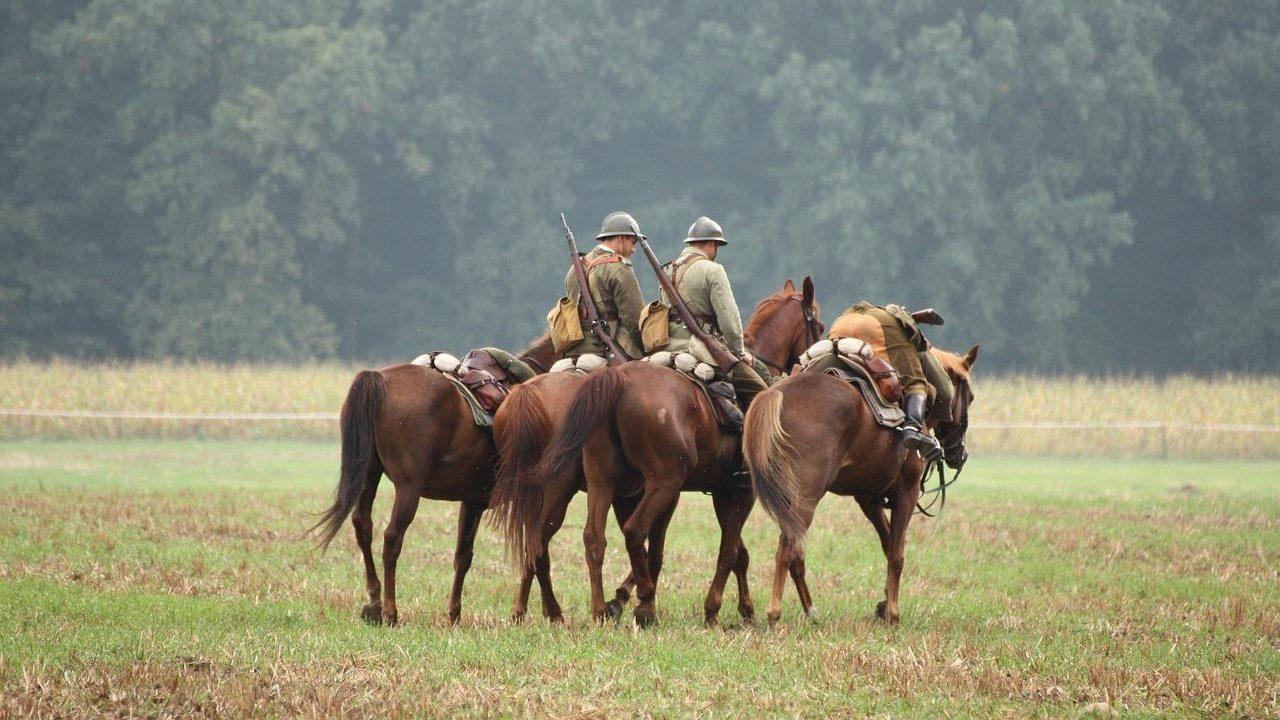 https://savoir-animal.fr/wp-content/uploads/horses-2197883_1280-1280x720.jpg